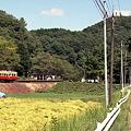 写真: 秋の小湊鉄道2010 06