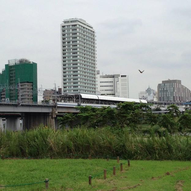写真: 二子玉川駅