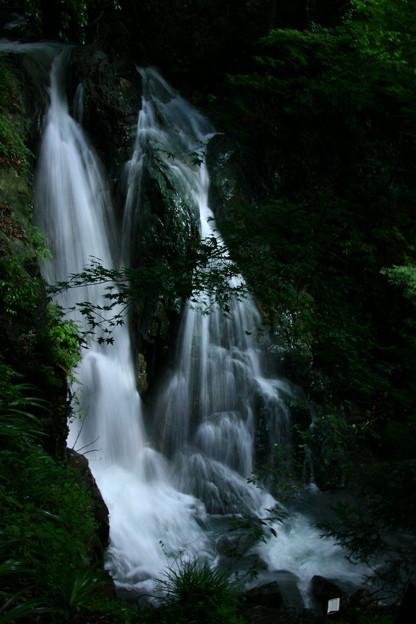 Photos: 374 赤沢 不動滝