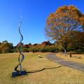 茨城県北芸術祭 400  奥久慈茶の里公園