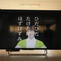写真: 茨城県北芸術祭 517  美和中学校