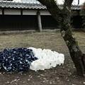 茨城県北芸術祭 201  穂積家住宅