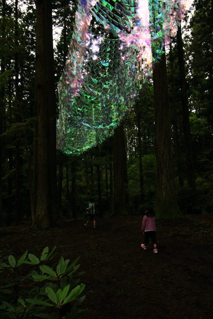 Photos: 茨城県北芸術祭 357  御岩神社