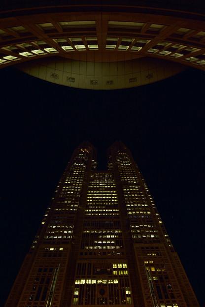 東京都庁、東京都議事堂