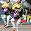 Photos: 28.7.31夏まつり仙台すずめ踊り(その7)