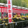 28.11.2塩竈市菊祭