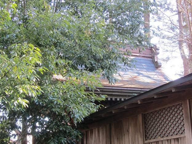 29.2.13鹽竈神社(二郷塩釜神社)本殿