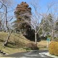 29.3.8鶴頭公園