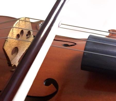 東京・中野・練馬・江古田、ヴァイオリン・ヴィオラ・音楽教室<br /> 誰でもできること
