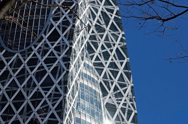 写真: 冬の新宿