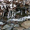 Photos: 氷の芸術