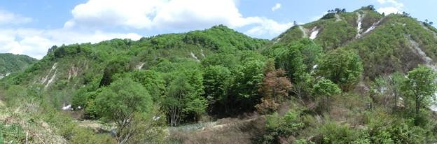 滝地域、家の裏山側 2013-05-13-WL-110