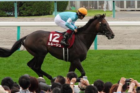 11R 札幌記念 ルルーシュ