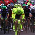 写真: THE LAST RACE  Fabian Cancellara