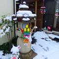 写真: 今年初めての雪です