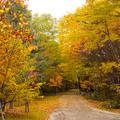 写真: 駆けていく秋