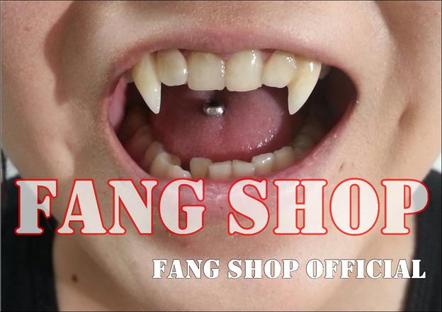 FANG SHOP 付け牙 A-0248(左右側切歯審美Type)