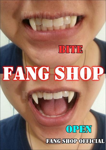 FANG SHOP 付け牙 N-2079