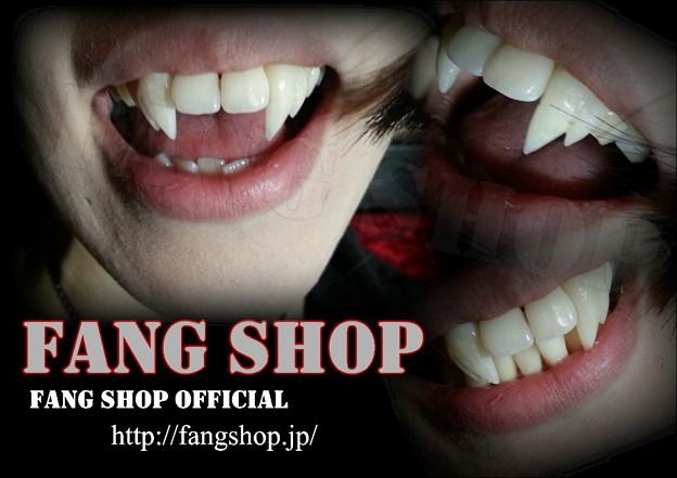 FANG SHOP 付け牙 S-0179(琴牙type)