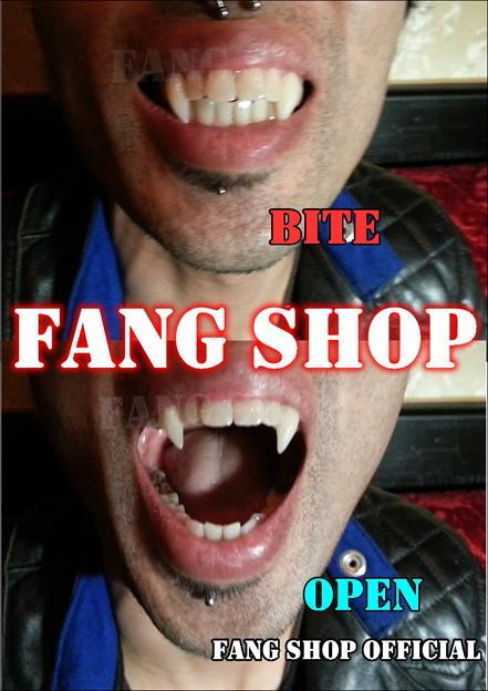 FANG SHOP 付け牙 N-2093