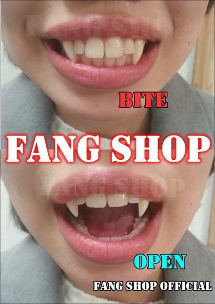 FANG SHOP 付け牙 N-2127