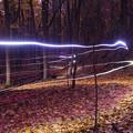 写真: Twilight Bike Trail