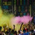 Photos: Color Run