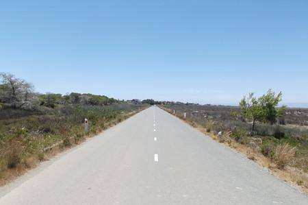 ネコの修道院への道0627