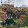 Photos: 白糸の滝HDR-