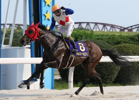 サルバドールハクイ レース_2(16/08/12・第45回 くろゆり賞)