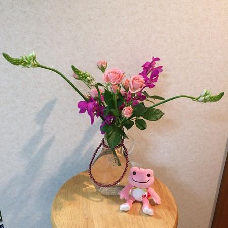 赤玉パンチ花
